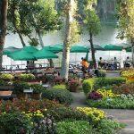 Restaurants Chiang Mai